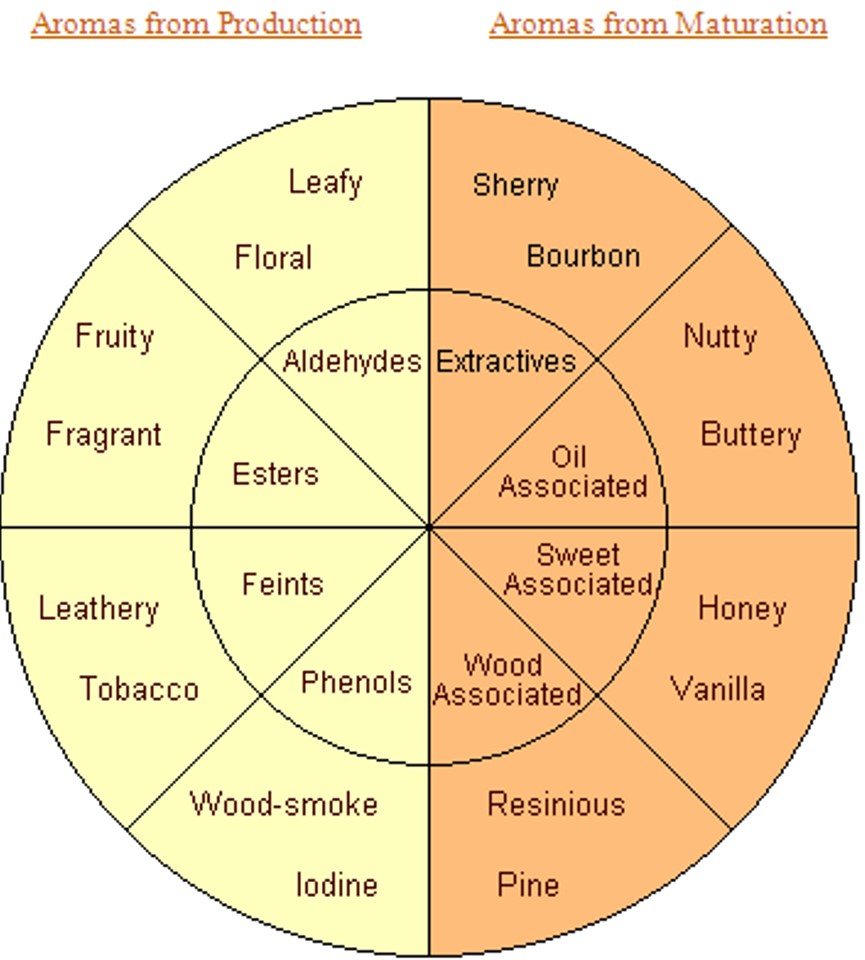 Whisky aroma wheel